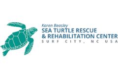 The Karen Beasley Sea Turtle Rescue and Rehabilitation Center