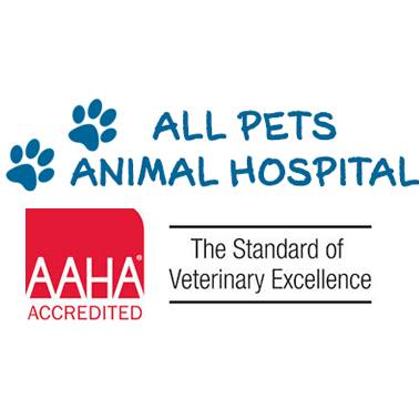 All Pets Animal Hospital of Sneads Ferry