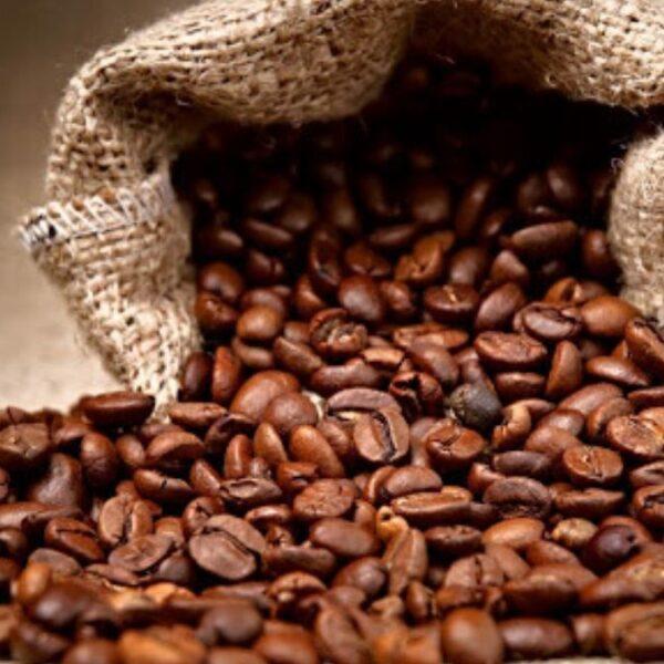 Diferencia entre café de especialidad, premium y gourmet.