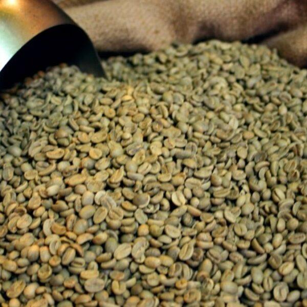 Cómo almacenar café verde.