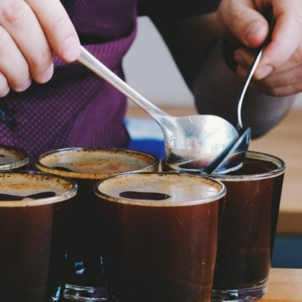 Cualidades catador café