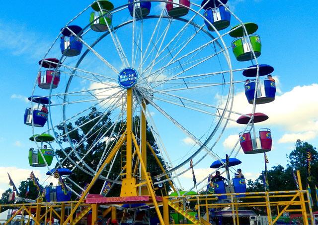 Expo Wheel