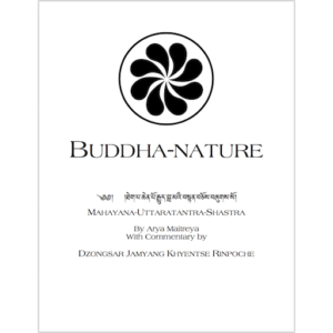 Buddhanature - DJKR 512px
