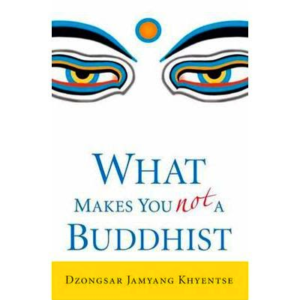 DJKR What Makes You Not a Buddhist 400px