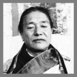 HH Dudjom Rinpoche #2