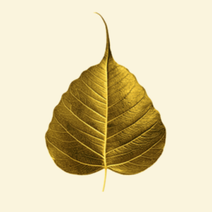 Gold bodhi leaf 512px