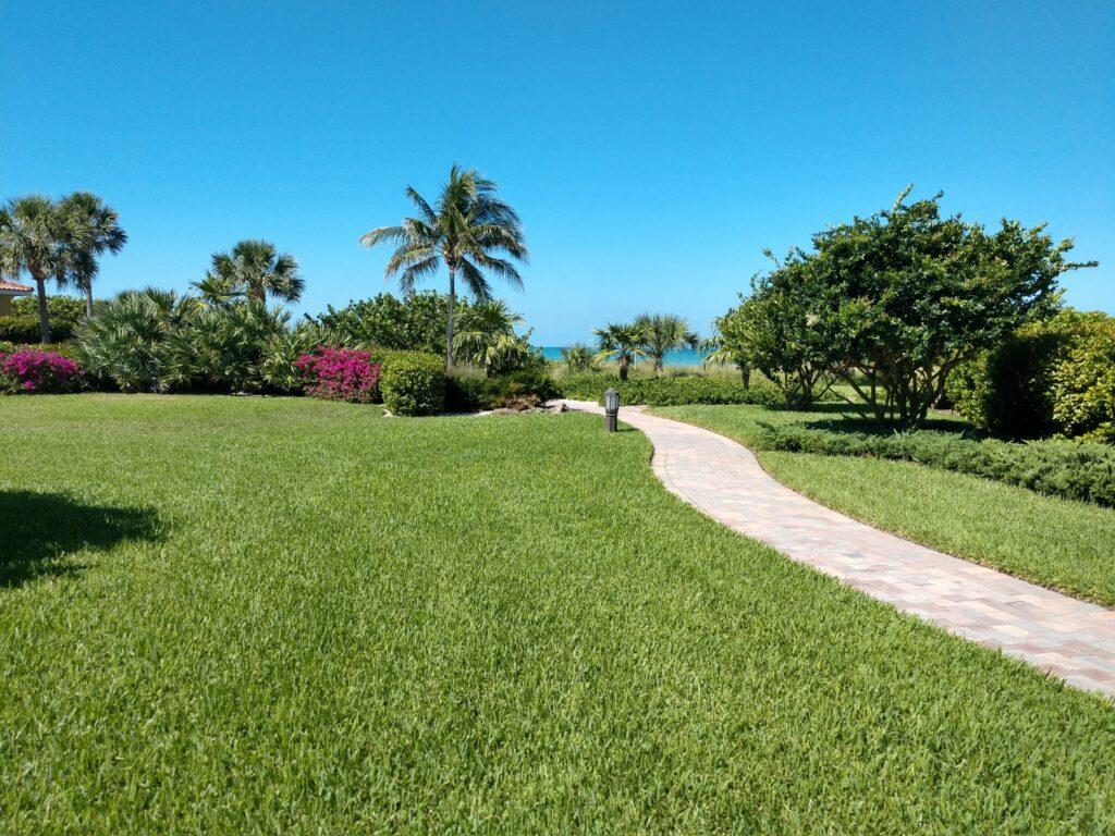 organic lawn care sarasota