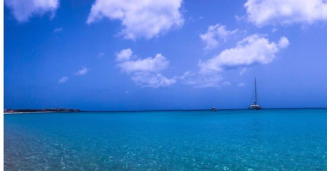 #daydreaming of the beautiful blue sky, gentle sea and the warm, salty breeze of #anguilla #sundaymood #desertdreams