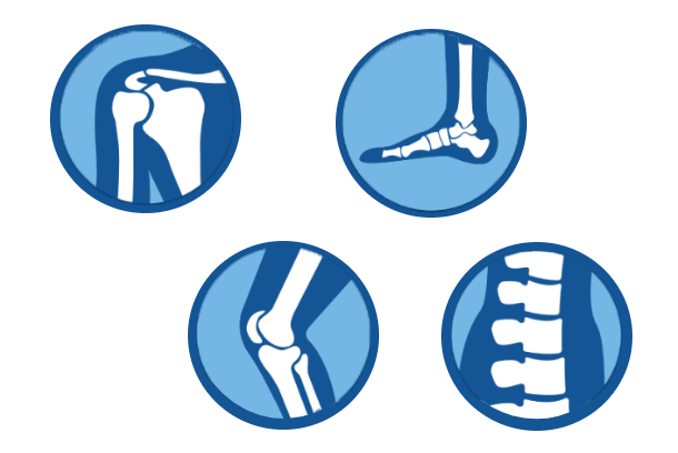 treatment area icons transparent, shoulder, foot, knee, spine