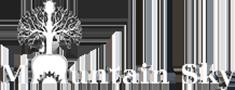 mountain sky logo