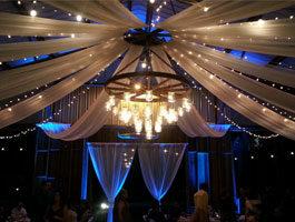 uplights, up lights, ft myers, naples, cape coral, port charlotte