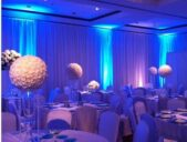 led blue uplighting, ft Myers, sanibel , captive Island