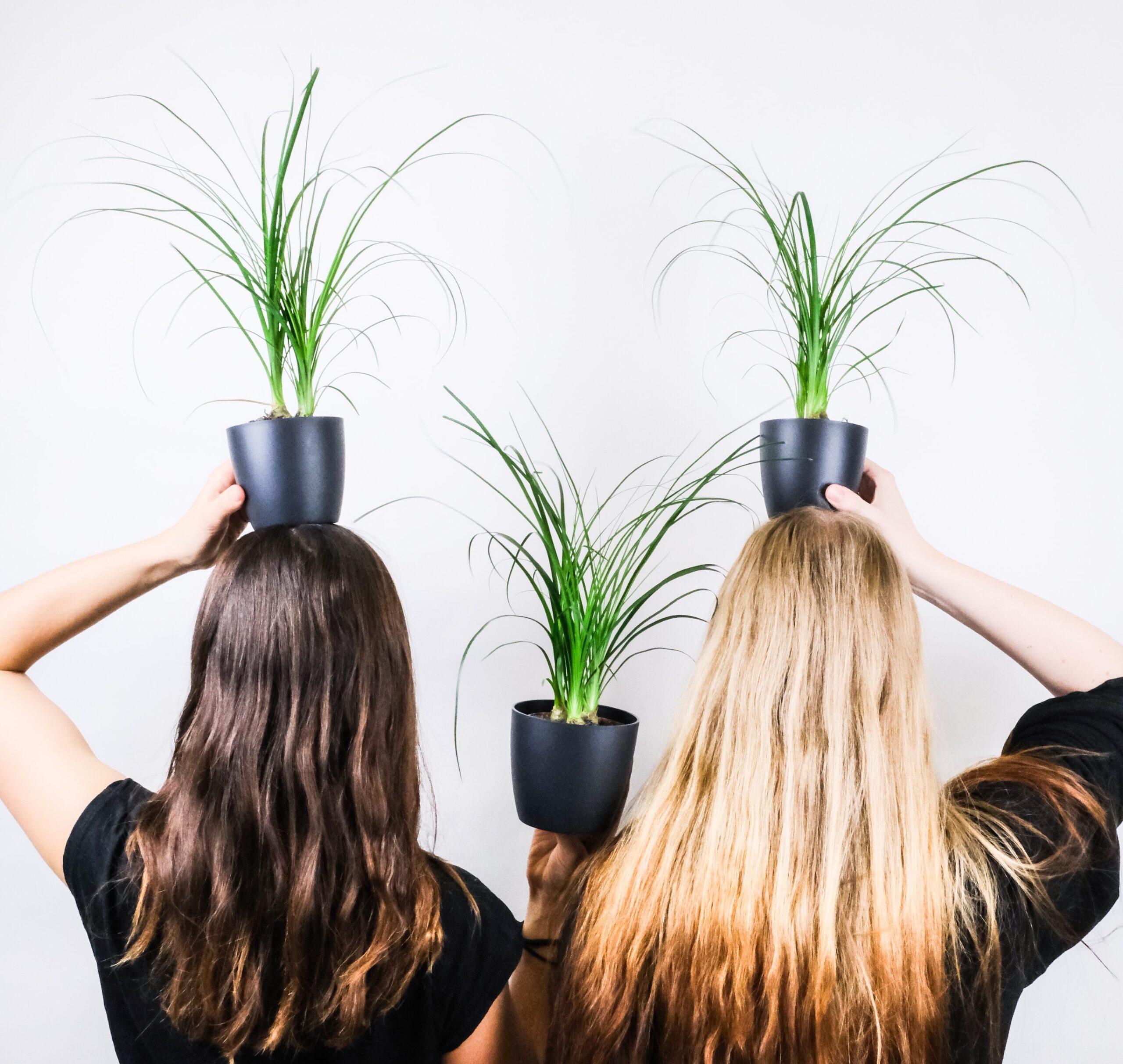 Queda de cabelo: o que fazer para tratar?