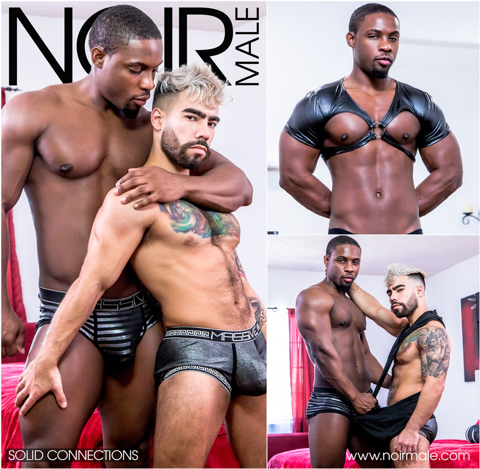 Awarded Gay Studio, Noir Male, Bares All in 2020