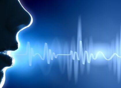 a voice commands a region
