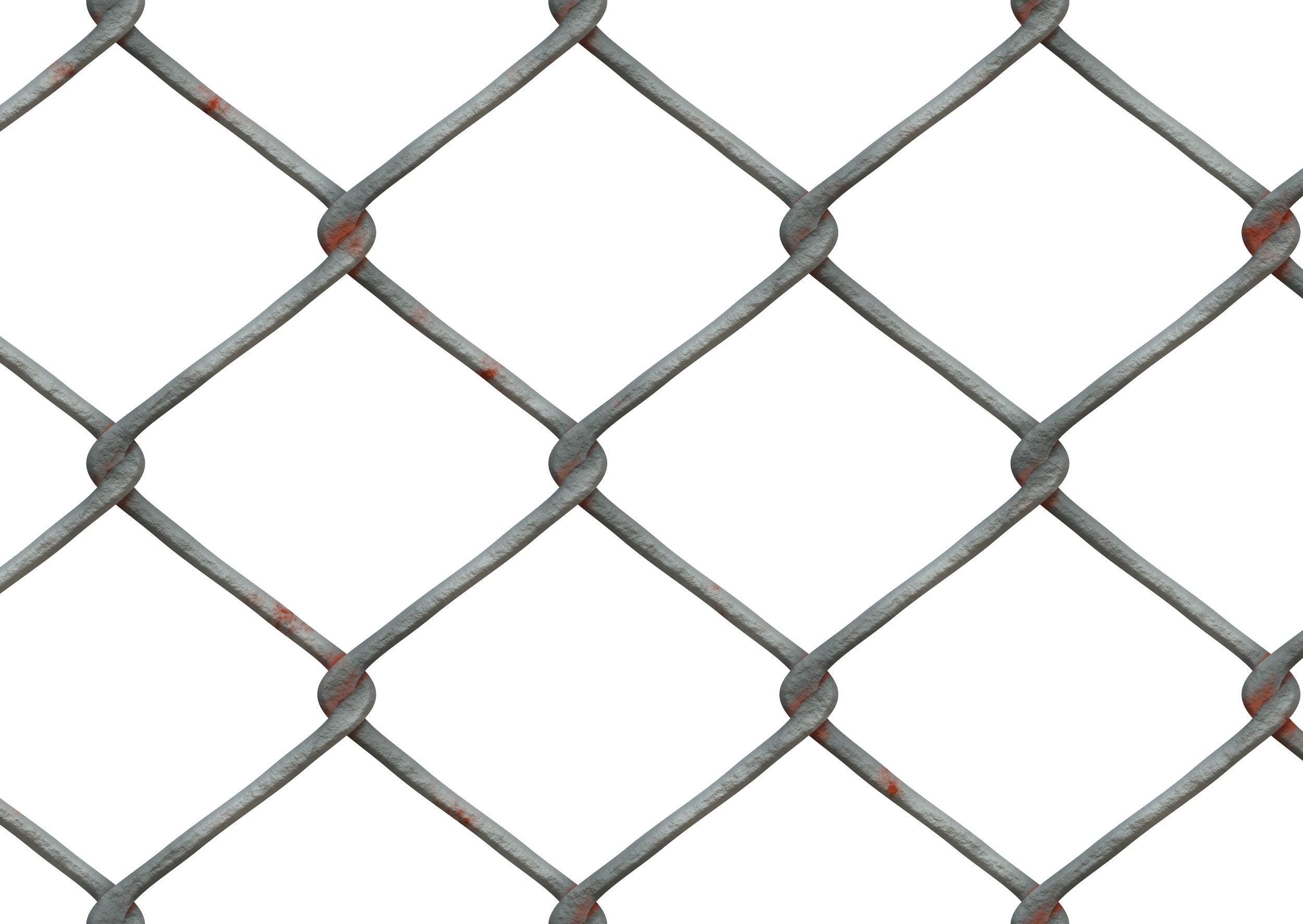 1wire-mesh-509117