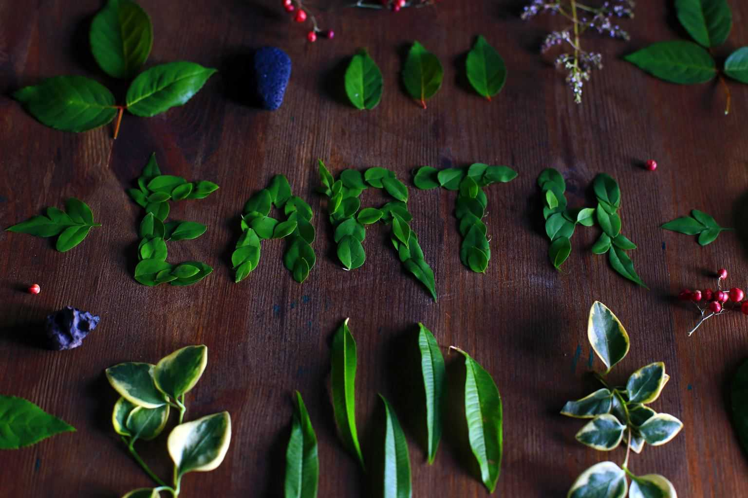 LegalNet Inc Supports Earth Day with Paperless Efforts