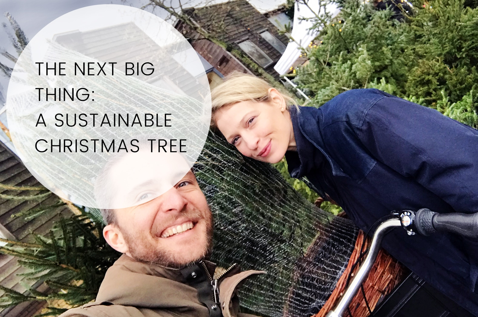 THE NEXT BIG THING: A SUSTAINABLE CHRISTMAS TREE