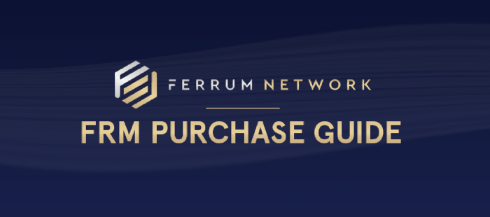 - 1 GNDUAePk2YeKQUcTfc5kiQ - Ferrum Network FRM Purchase Guide