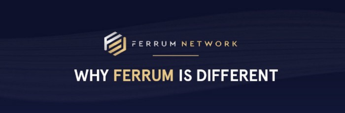 - 1 fImnNKnM6NOIooCdLZyjCQ - Why Ferrum is Different: The Utility and Value of the FRM Token