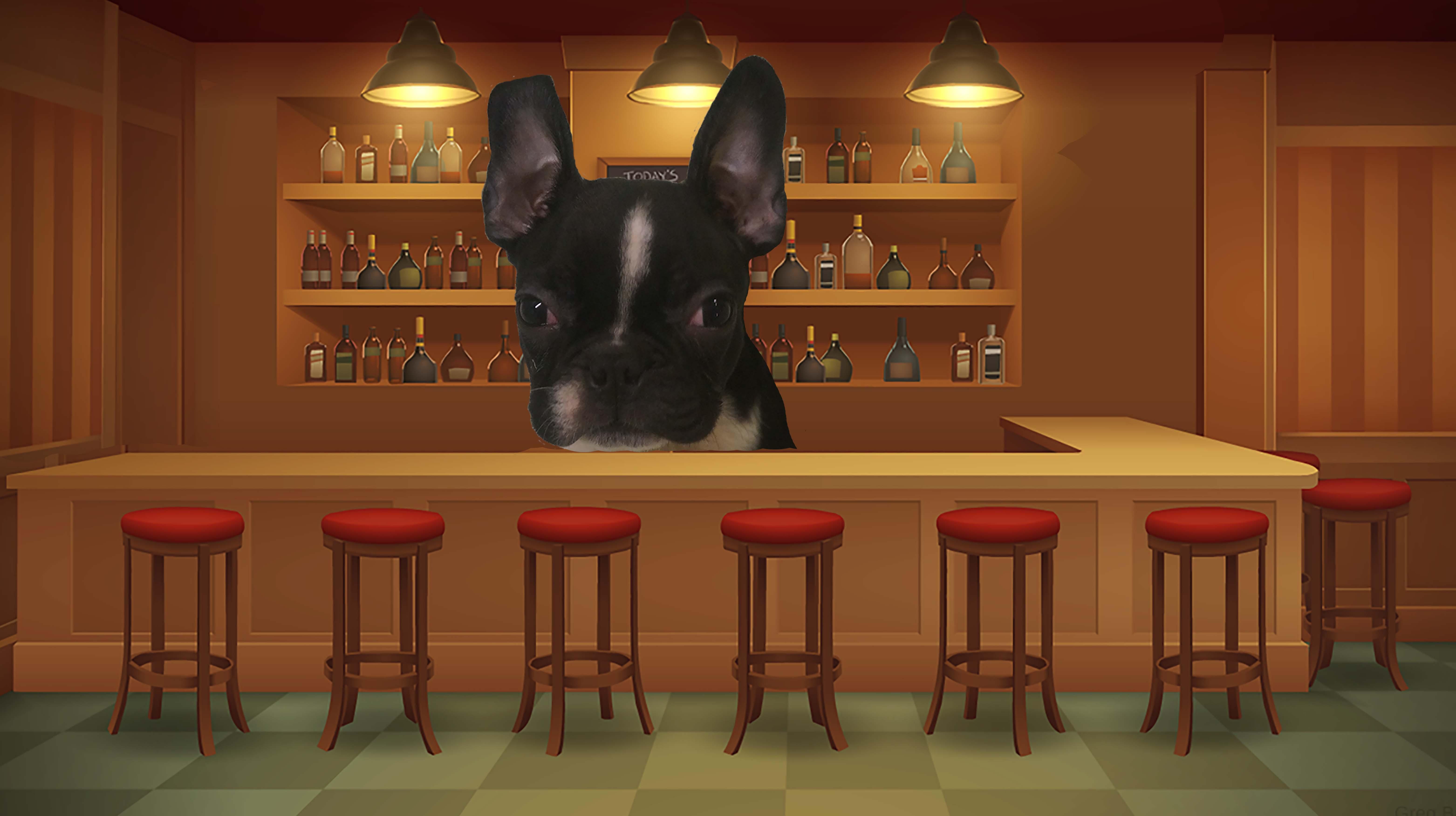 Dog of the Week: Whiskey