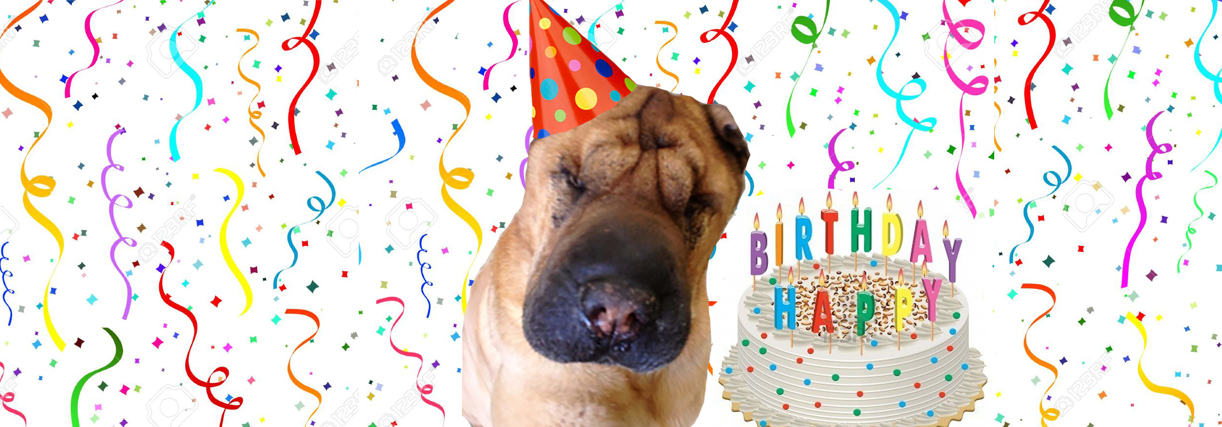 Winston's 9th Birthday
