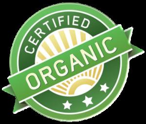 organic ekklesia