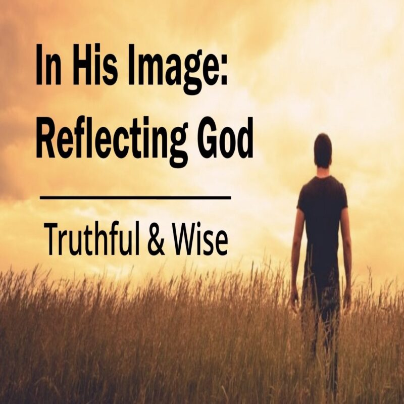 In His Image: Truthful & Wise Image