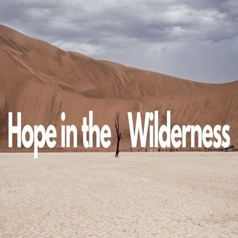 Hope in the Wilderness