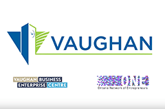 Dalikoo CEO is interviewed by the City of Vaughan Business Enterprise Centre.