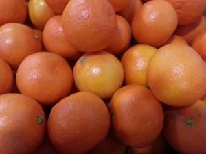 Seasonal Eats Page Mandarins