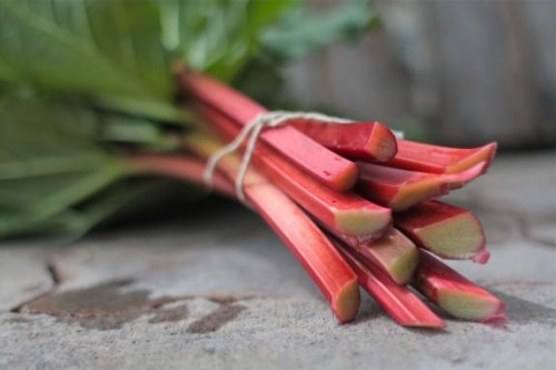 Rhubarb from AOC