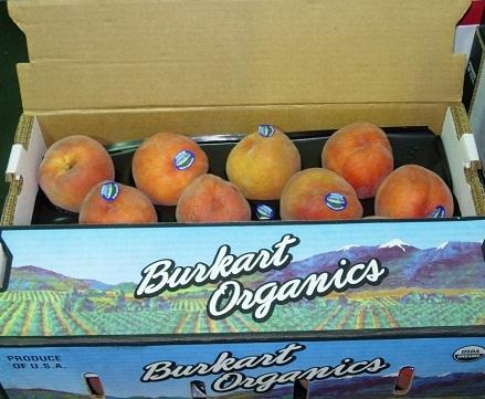 Burkart peaches