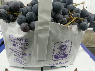 Heinke Concord Grapes (2)