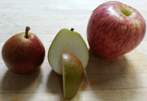 Seckel Pear with Cameo for size comparison