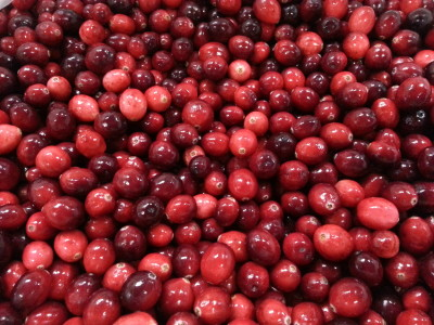 Bulk cranberries from Earl's Organic Produce