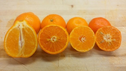 Minneola, Page, Clementine and Fremont smaller