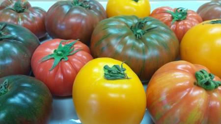 Tutti Frutti Mixed Heirlooms (8)