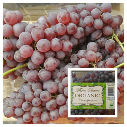Champagne Grapes Three Sisters