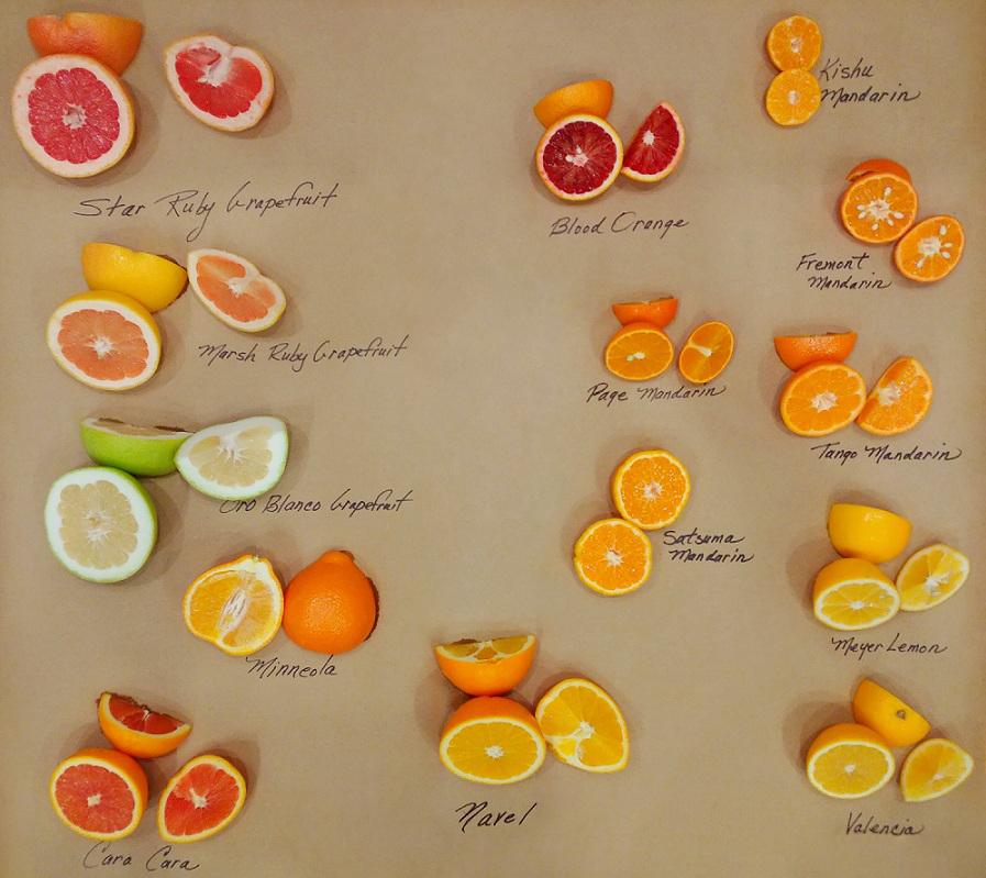 Winter Citrus Varieties EDIT
