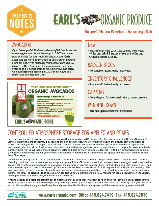 Buyer's Notes January 15th Page 1