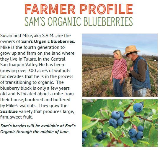 Sam's Blueberry Grower Profile