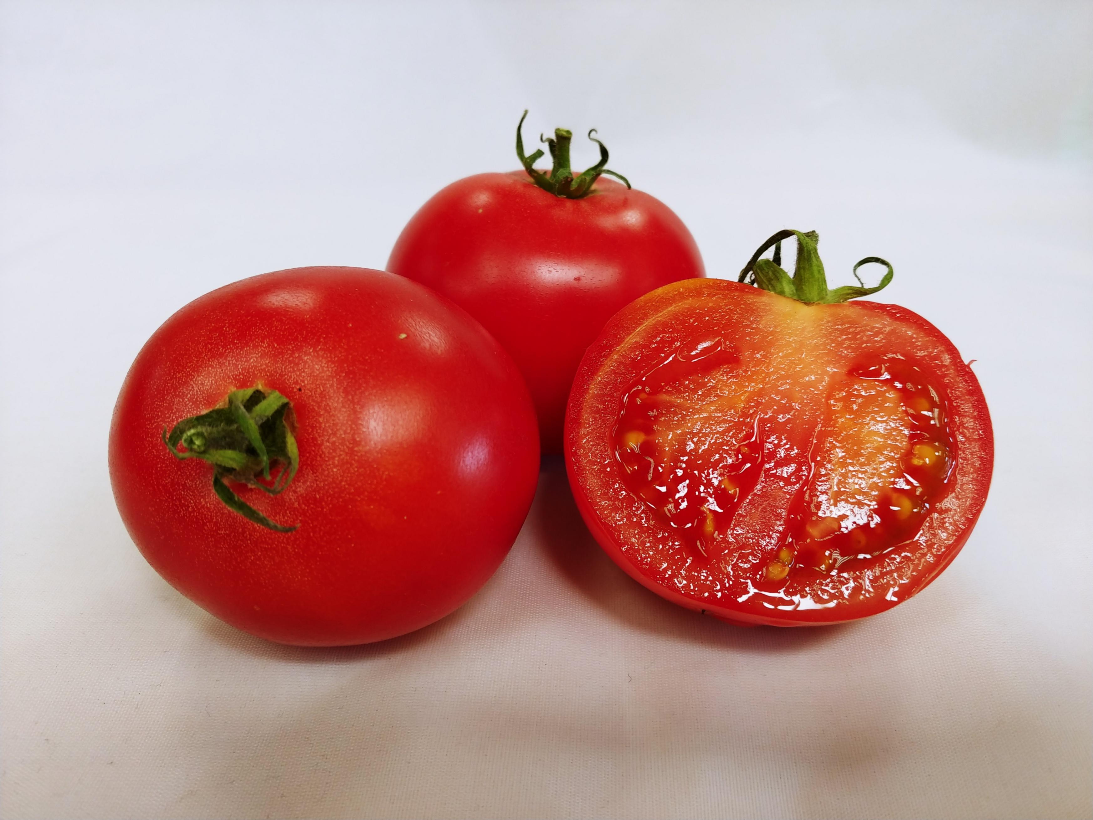 Momotaro Tomatoes (15)