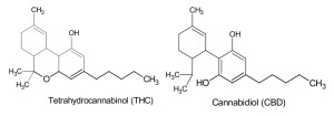 1-The-THC-and-CBD-molecules-showing-their-extremely-close-resemblance
