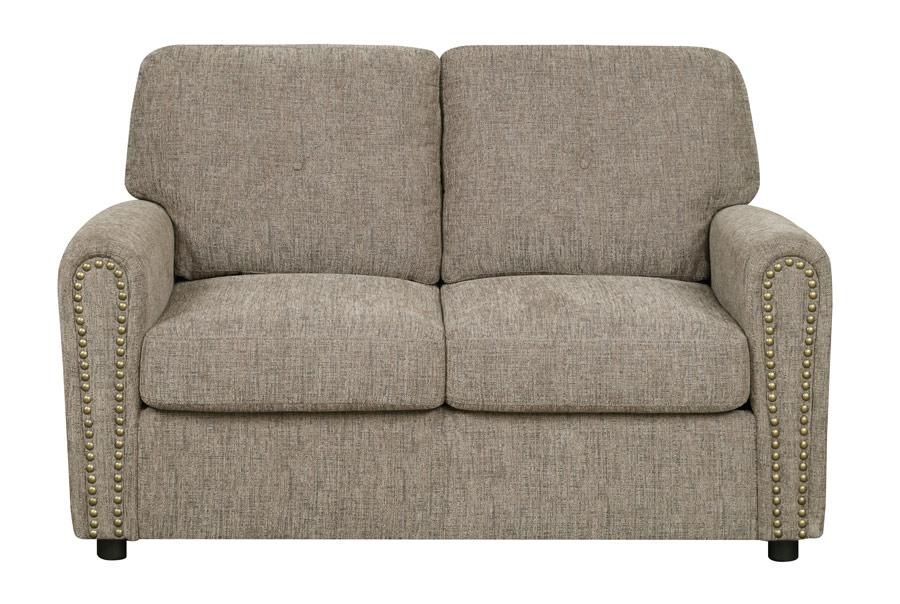 Twin Sleeper Sofa Serenity