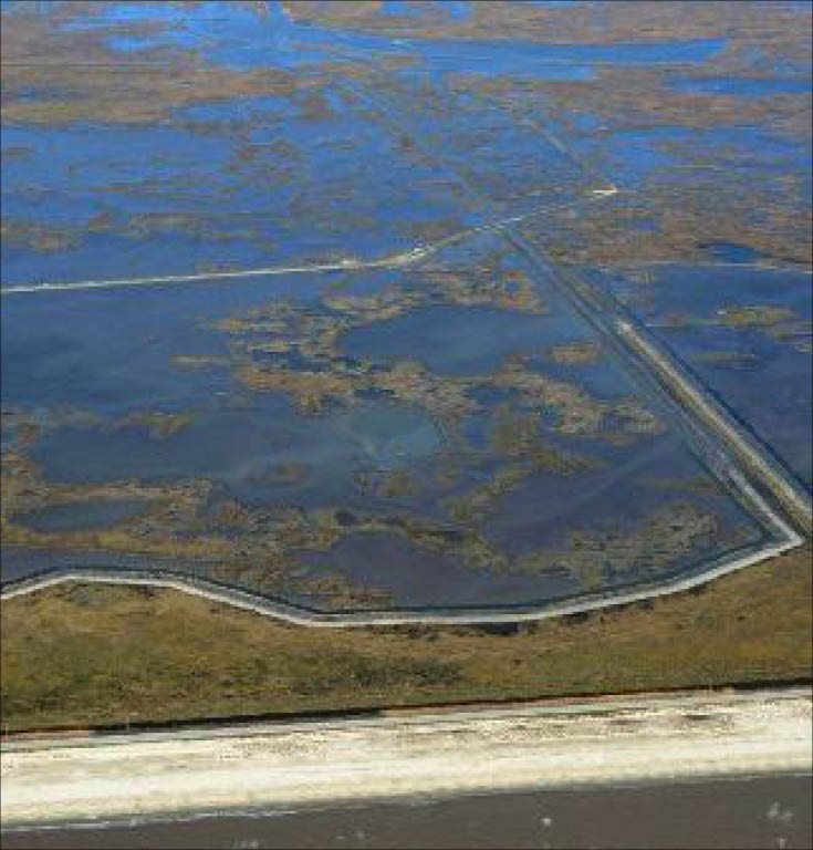 CPRA creates 1200 acres of marsh in Cameron Parish