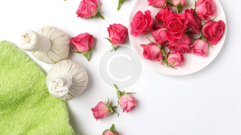 Dry Remedy : Penetrating Moisture