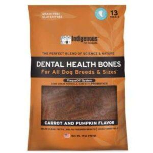 Dental Bones Carrot and Pumpkin