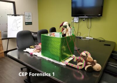 CEP Forensics