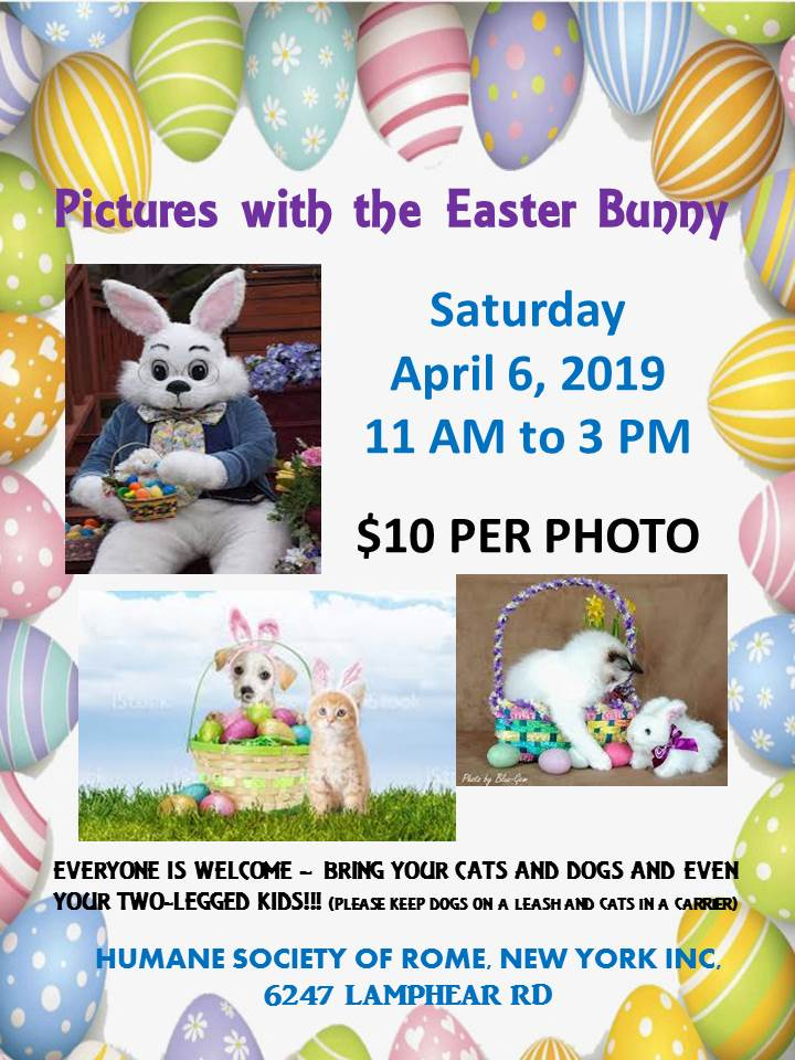 Pictures with the Easter Bunny @ Humane Society of Rome | Rome | New York | United States